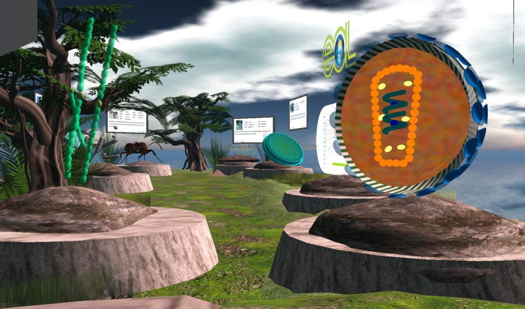 A snapshot of the EOL display in Second Life, built for the MacArthur Foundation. Display features many different kinds of life, highlighting the service provided by the Encyclopedia of Life website.