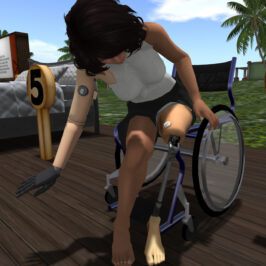 Virtual Ability: Virtual Health Adventures