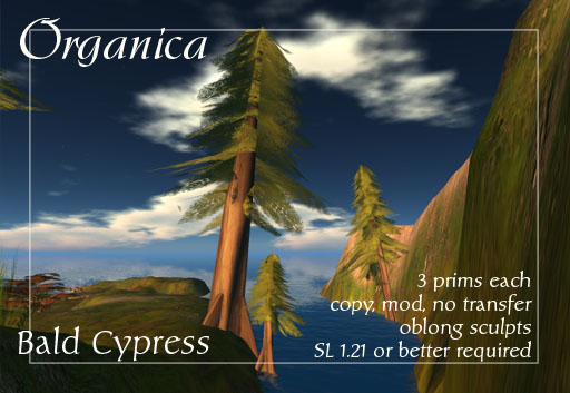 swampcypress-vendor