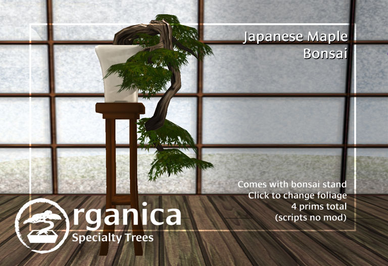 japanesemaplebonsai-vendor