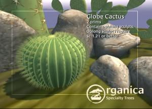 globecactus-vendor