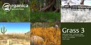 Grass3-Vendor