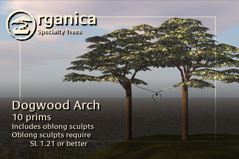 dogwood1-vendor-3