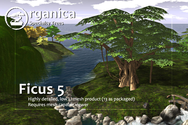 March SUYS stuff + new tree + land availability