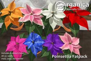 Poinsettia-fatpack-vendor