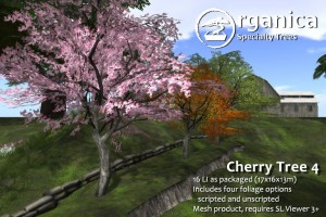Cherry4-Vendor
