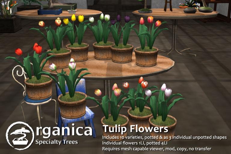 TulipFlowers-fatpack-vendor