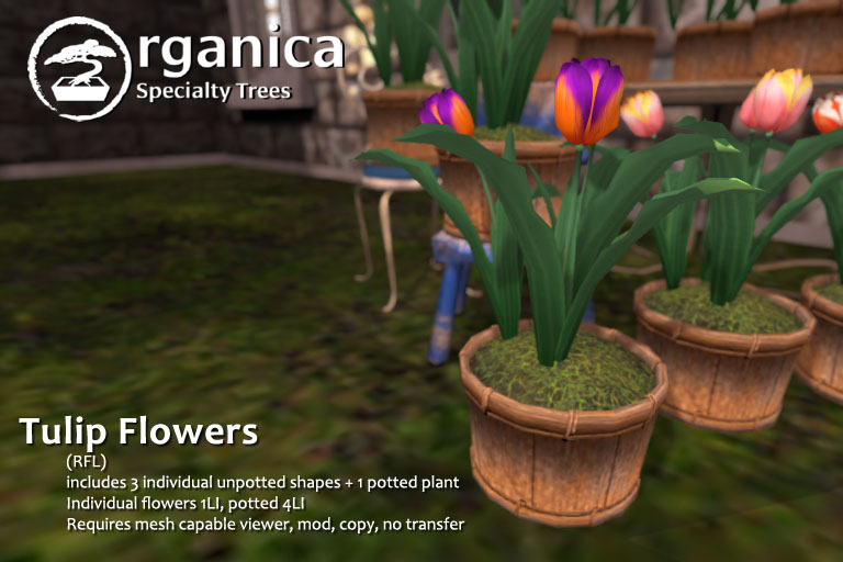 TulipFlowers-RFL-vendor