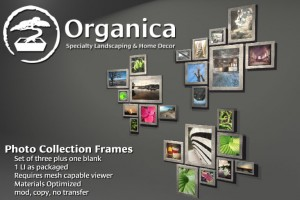 FrameCollection-vendor