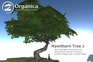 Hawthorn2-vendor