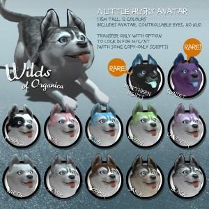 Husky-Vendor-1024