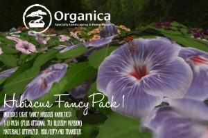 Hibiscus-Fancy Pack 1-sml