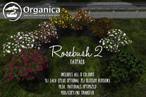 Rosebush2-fatpack-vendor-sml