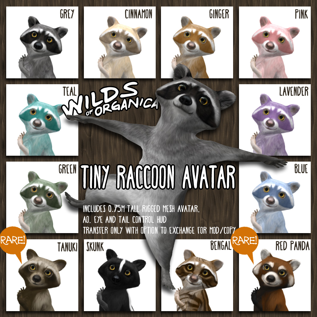 New Raccoon Avatars starting Sept 1!