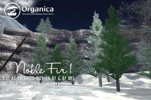 NobleFir-vendor-sml