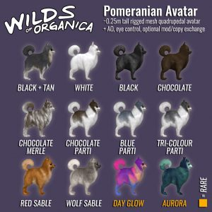Pomeranian-legend-1024