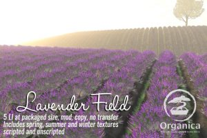 LavenderField-vendor-768