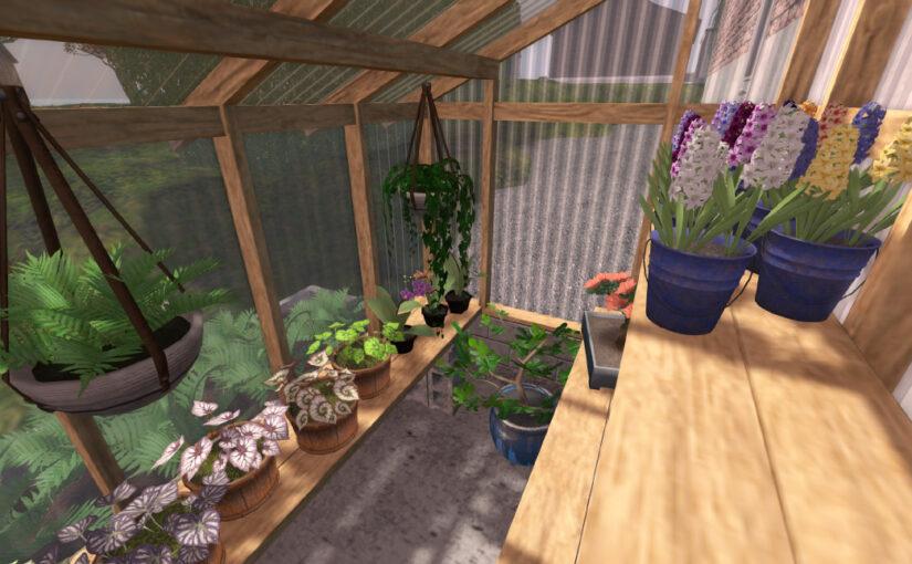 Organica New Releases – June 2020